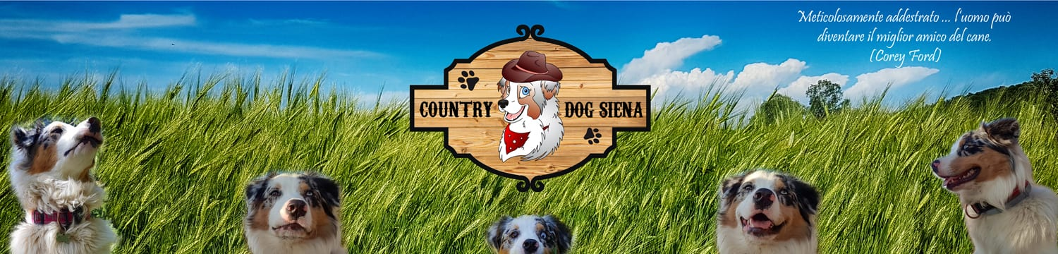 Country Dog Siena